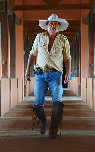 Rincon de la Vieja Horses Sabaneros05