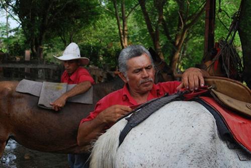 Rincon de la Vieja Horses Sabaneros08