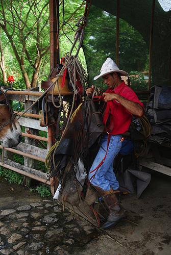 Rincon de la Vieja Horses Sabaneros10